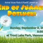 summer potluck graphic